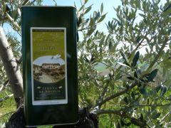 Olivenöl aus Cellino